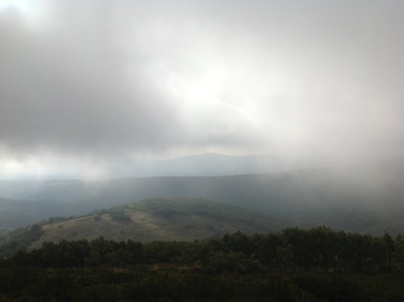 Foggy day at Irago Mountain