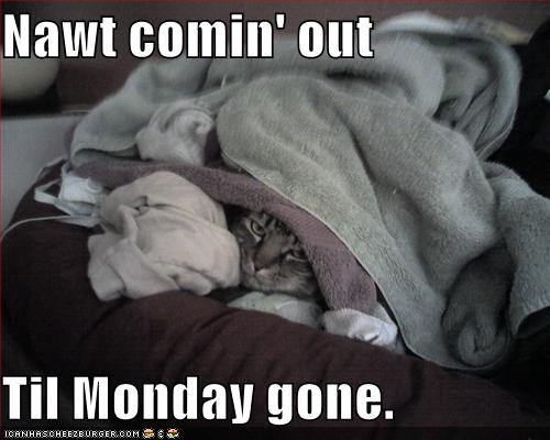 monday-is-gone