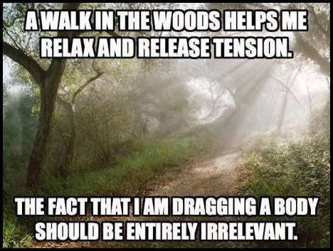 Walks in the forest - great exercise!