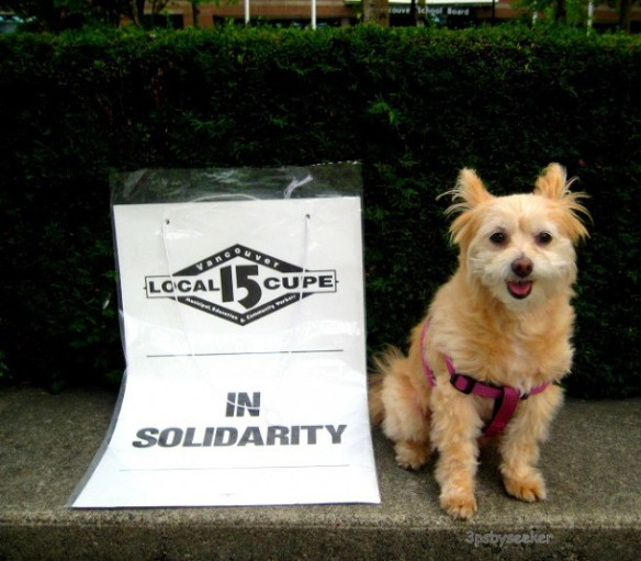 Dog on strike