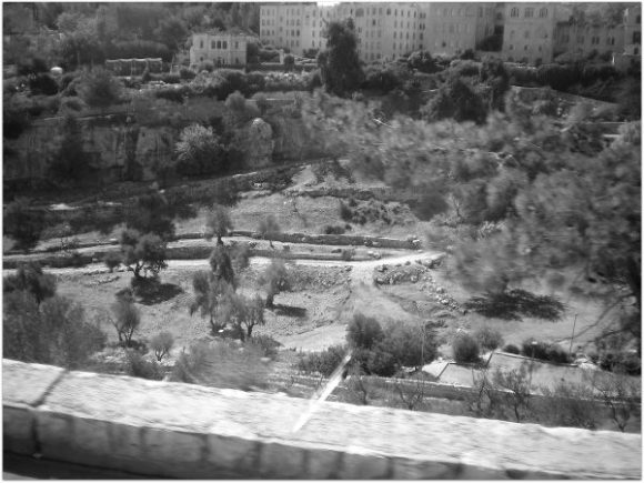 Potter's field at Mt. Zion where Judas hanged himself