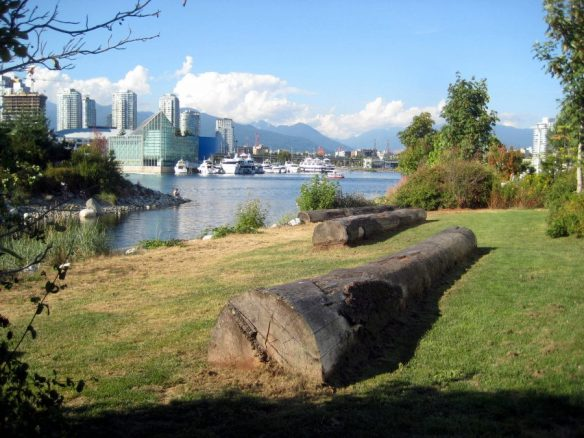 False Creek Island (30)